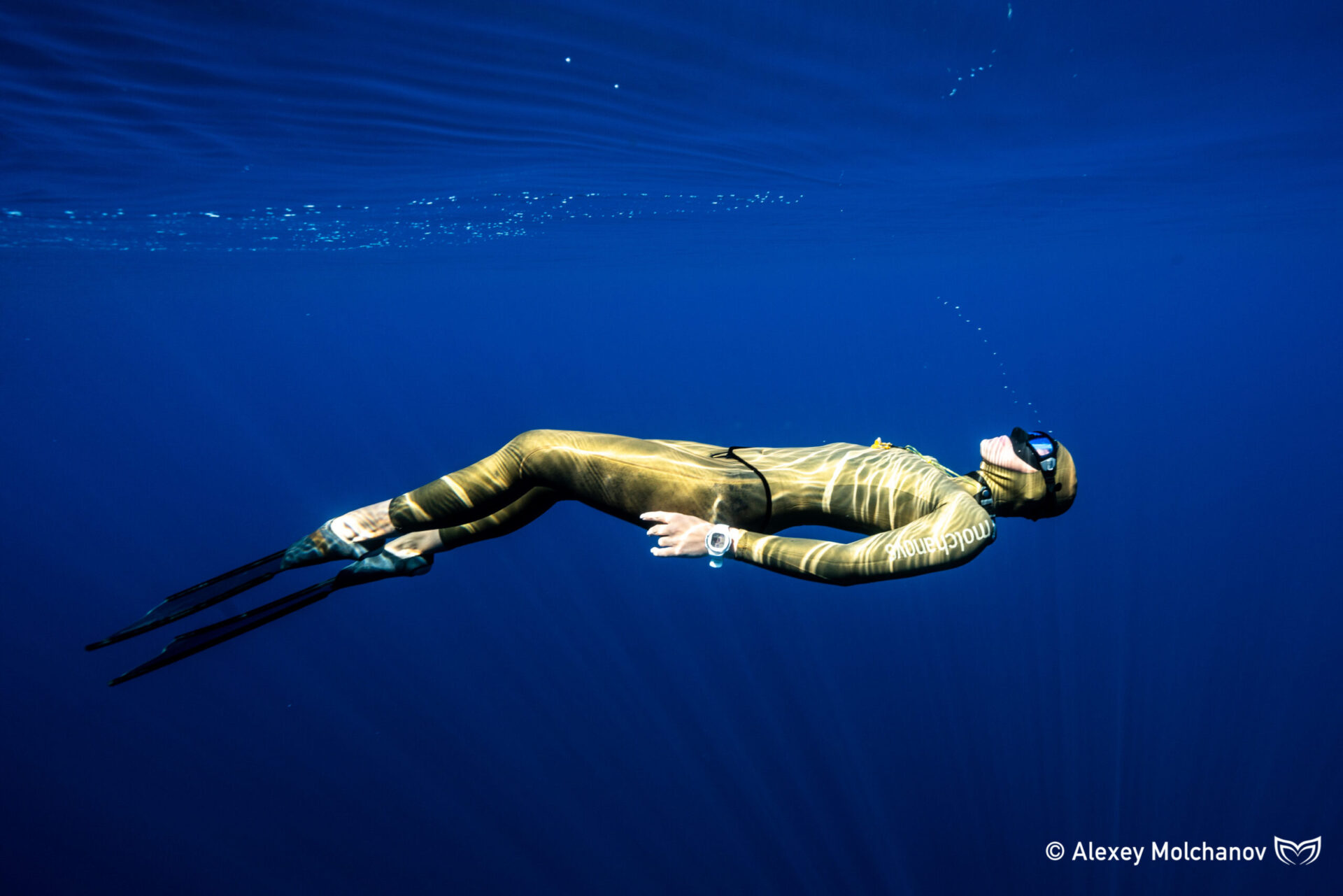 wave 1 freediving course